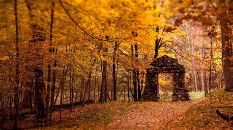 Autumn Windows Xp Wallpapers by Windows Xp Fall Wallpaper Gallery