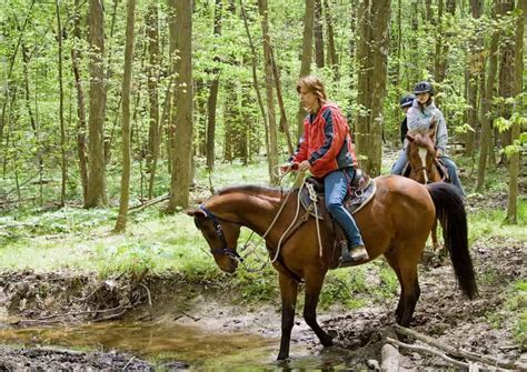 riding horseback trail gatlinburg ride outdoor tn activities stables national park shenandoah mountain riders horse woods smoky encephalitis equine eee