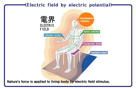 high potential electric massapequa high voltage therapy