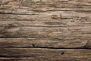 Dry Old Wood Texture