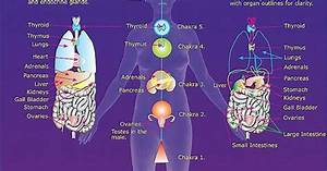 The Hindu Chakras Have Some Very Interesting Connections