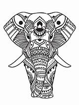 Coloring Elephant Adults Adult Zen sketch template