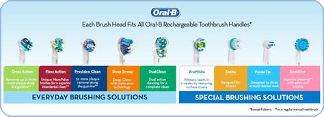 replacement toothbrush, brush head, oral b refill, oral b