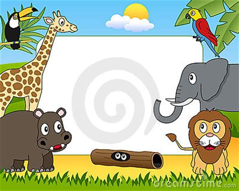 african animals photo frame  stock images image