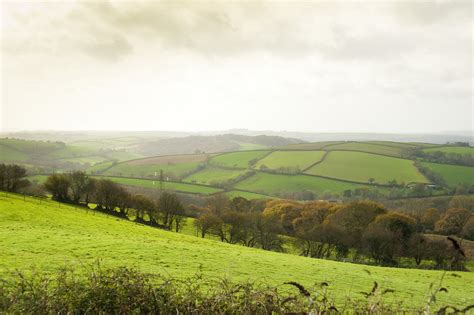 tropical themed free stock photo of cornish countryside photoeverywhere