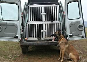 Cage Transport Chien Voiture : cage pour chien ~ Medecine-chirurgie-esthetiques.com Avis de Voitures