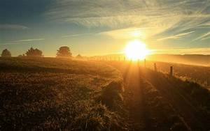 Morning, Nature, Sun, Rays, Landscape, Sunlight, Field, Wallpapers, Hd, Desktop, And, Mobile, Backgrounds