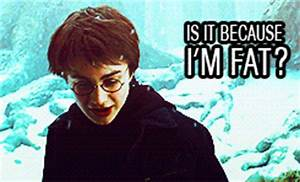 harry potter funny hp yeah i will pee on all the things ...