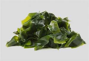 Eating Seaweed during Pregnancy: Health Benefits, Risks ...  Seaweed