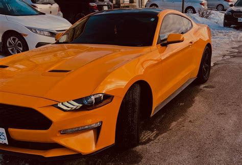 ford lease takeover  mississauga   ford mustang