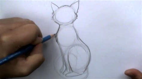 draw  basic cat sitting youtube