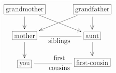 what is your parents cousins child to you the mathematics of your next family reunion plus maths org