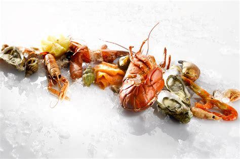 site de cuisine gastronomique nano resto cuisine gastronomique et moderne à la découverte de vos sens