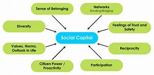 Preservation Of Community Assets  Social Capital  The