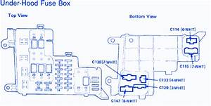 Honda Accord L X 1991 Fuse Box  Block Circuit Breaker Diagram