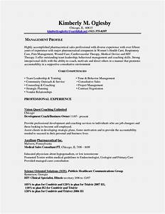 fill in the blank resume templates resume template With chicago resume template