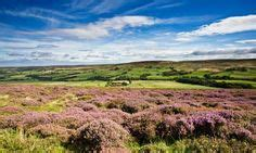 LOVE London. | Dartmoor national park, National parks ...