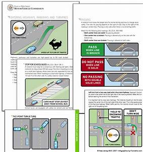 Driving Manual Infographic