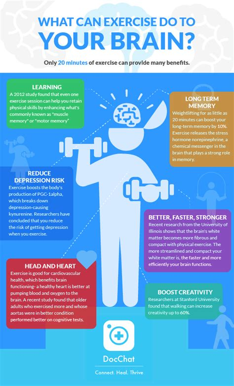 exercise    brain infograph