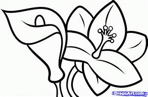 Drawings Of Flowers For Kids