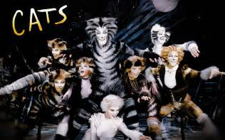 the play cats cats on cats musical musicals and rum