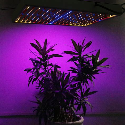 led plant grow lights 5pcs 30w led grow light 290led blue orange smd3528