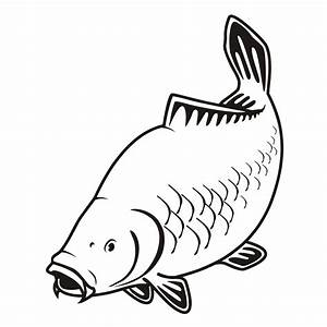 A site devoted to carp anglers and information on carp rig ...