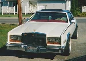 Dion211 1981 Cadillac Eldorado Specs  Photos  Modification Info At Cardomain