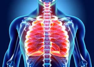 Comment Nettoyer Du Zinc : comment nettoyer ses poumons naturellement ~ Melissatoandfro.com Idées de Décoration