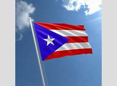 Small Puerto Rico Flag Puerto Rican Flag 3x2 ft The