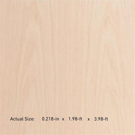oak plywood lowes shop 1 4 in oak plywood application as 2 x 4 at lowes com