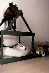Hundehaus Für Die Wohnung : so einfach kann man sich eine moderne hundeh tte f r die wohnung selber bauen ~ Buech-reservation.com Haus und Dekorationen