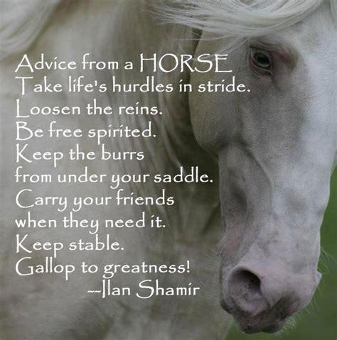 Horse Quotes Wallpaper. QuotesGram