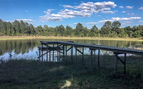 light up ocala 2017 florida 39 s water levels ocala online