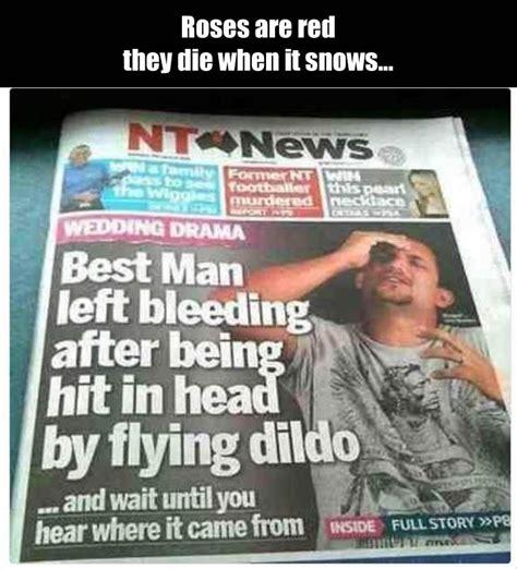 Meme Poem - funny poetic headlines 13 pics daily lol pics