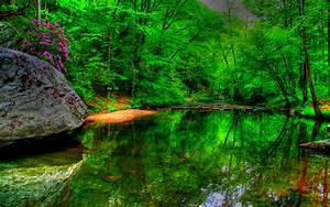 Dream, Spring, 2012, -, Green, Lake, Wallpapers