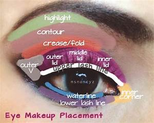 Nature U0026 39 S Eye  Eye Makeup Placement Diagram Of Eye Areas