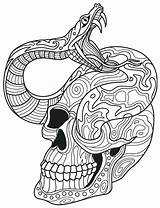 Coloring Snake Skull Pages Rattlesnake Sugar Adult Adults Skulls Drawing Printable Colouring Ball Dead Coiled Mandala Diamondback Python Intricate Snakes sketch template