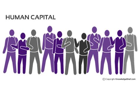 Human Capital  What Is It? Definition, Examples And More
