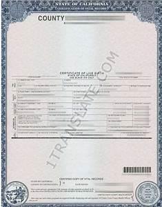 ukrainian russian us birth certificate translation With russian birth certificate translation template