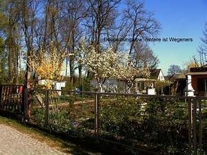 Kleingarten Hannover Kaufen : kleingarten kaufen kleingarten gebraucht ~ Whattoseeinmadrid.com Haus und Dekorationen