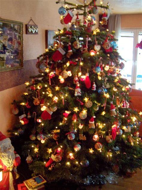 die wahre geschichte vom weihnachtsbaum burgwedel