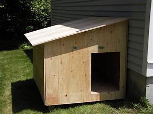 build your own dog kennel interesting ideas for home With building a dog kennel