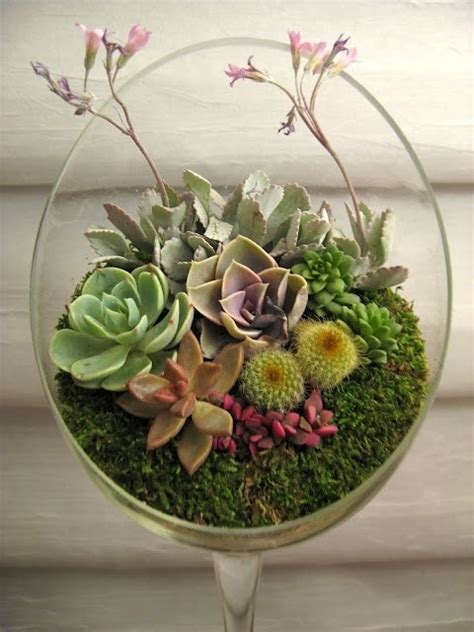 Unique Glass Container  43 Outstanding Succulent Gardens