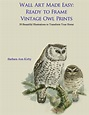 Wall Art Made Easy: Ready to Frame Vintage Owl Prints: 30 ...