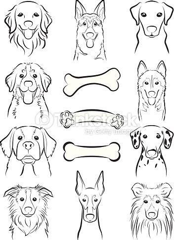 illustration   face   dog draw dog