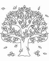 Autumn Coloring Tree Colouring Topcoloringpages sketch template