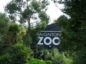 paignton zoo paignton