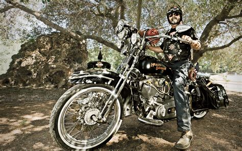Harley-davidson Davidson Harley Motorcycles Motorbikes