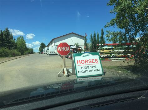 This Stop Sign At An Equestrian Park Says Whoa